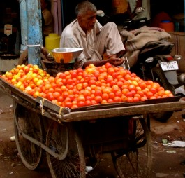 The Very Varied Fresh Food of India 1